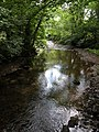 Afon Honddu - geograph.org.uk - 216602.jpg