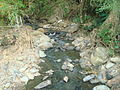 Agres River. Escazu. Costa Rica.JPG
