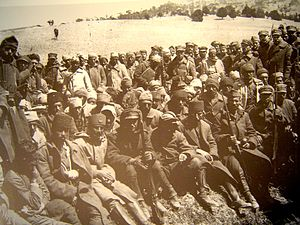 Battle of Sakarya - Turkish prisoners of war during the battle of Sakarya