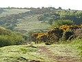 Aish Ridge - geograph.org.uk - 169852.jpg