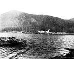 Alaska Packers Association salmon cannery, Loring, Alaska, 1914 (COBB 253).jpeg