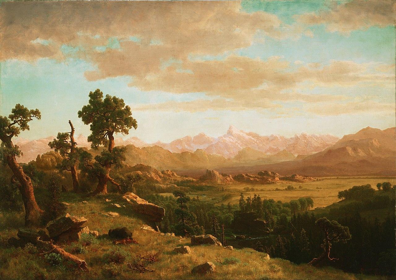 Canvas Painting Denver