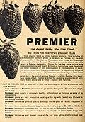 Allen's 1949 book of berries (1949) (17330281383).jpg