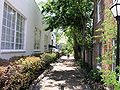 Alley in Charleston, SC.JPG