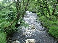 Allt Loch Innis nan Seangan - geograph.org.uk - 318867.jpg