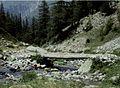 Alpes-Maritimes Saint-Martin-Vesubie Lacs De Prals Torrent - panoramio.jpg