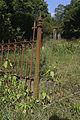 Alter Friedhof Harburg Einzelgrab 06.jpg
