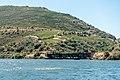 Alto Douro Vinhateiro DSC00198 (37122922716).jpg