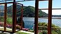 Ammirando il Lago di Como dalle finestre delle serre.jpg