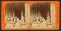 An Hour's search; or, Aunt Venue hunting for Florida fleas, from Robert N. Dennis collection of stereoscopic views.png