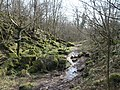 Ancient river bed - geograph.org.uk - 375903.jpg