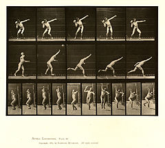 Animal locomotion. Plate 314 (Boston Public Library).jpg
