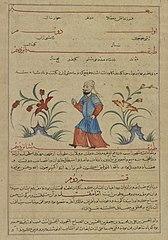 Be Wang, Emperor of China,  from a manuscript of Hafiz-i Abru's Majma'al-tawarikh