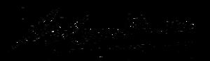 Antoon Coolen - Image: Antoon Coolen signature