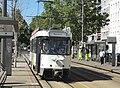 Antwerpen - Antwerpse tram, 23 juli 2019 (030, Frankrijklei, station Stadspark).JPG