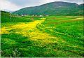 Armenian Landscape C4372.jpg