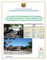 Armindo Tomo - Fortalecimento da Capacidade Governativa Local - Moçambique.pdf