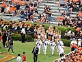 Auburn, AL, USA - panoramio - Tom Key (33).jpg