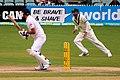 Australia v England (2nd Test, Adelaide Oval, 2013-14) (11287524705).jpg