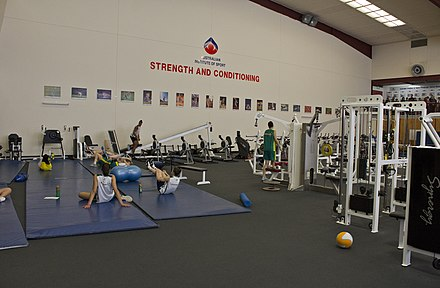A strength and conditioning gym Australian Opals in the AIS Strength and Conditioning Gym during day three of the Opals camp.jpg