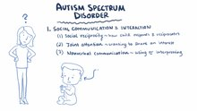 Literature review on autism spectrum disorder