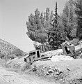 Autowrakken van pantservoertuigen op een helling langs de kant van de weg, Bestanddeelnr 255-2224.jpg