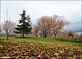 Autumn خزان - panoramio.jpg