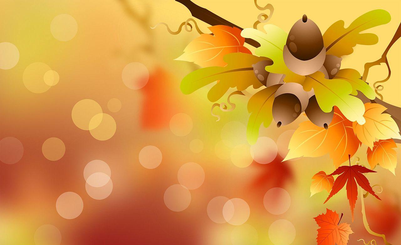 Осенние листья фото обои картинки на рабочий стол