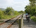 Avon Valley Railway and cyclepath (2) - geograph.org.uk - 1305445.jpg