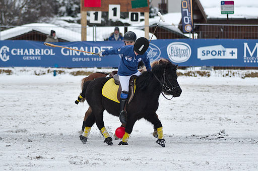 BMW Polo Masters Megève - 20140126 - Démonstration de polo-poney 4