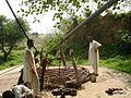 Bachlakra Village well.jpg