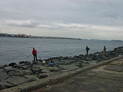 Balıkçılar.JPG