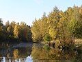 Balashikha, Moscow Oblast, Russia - panoramio (10).jpg