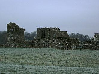 Ballybeg Priory - Ballybeg Priory