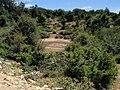 Balsa de Bagoandi - panoramio.jpg
