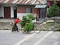 Bananen op de fiets (6693734021).jpg