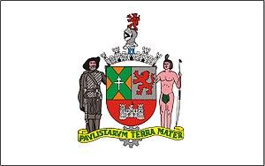 São Bernardo do Campo - Image: Bandeira de São Bernardo do Campo
