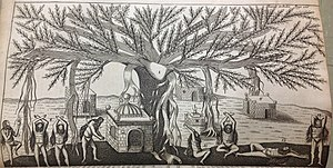 Jean-Baptiste Tavernier - An illustration of Tavernier's of Indians performing Yoga under a Banyan tree.