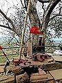Barabar Caves - Lingas and Tree (9224746949).jpg