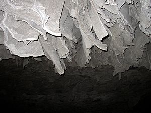 Barbarossa Cave - Flakes of gypsum in the Barbarossa Cave (2005)