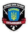 Batkivshyna Shevron.jpg