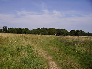 Battle of Lansdowne - Image: Battlefield of Lansdown