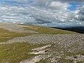 Bealach between Carn nan Gobhar and Creag Dhubh - geograph.org.uk - 214111.jpg