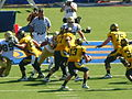 Bears on offense at UCLA at Cal 2010-10-09 17.JPG