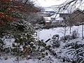 Beck, Hackwood Park, Hexham - geograph.org.uk - 1627783.jpg