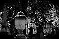 Beechwood Cemetery June 2011 (1).jpg