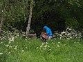 Beehives in Baughton - geograph.org.uk - 172663.jpg