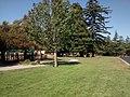 Belvedere Park, California 1.jpg