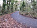 Bend in Netherwoods Road on its approach to T-junction - geograph.org.uk - 1580067.jpg