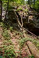Berdorf (LU), Aesbachtal -- 2015 -- 6349-53.jpg